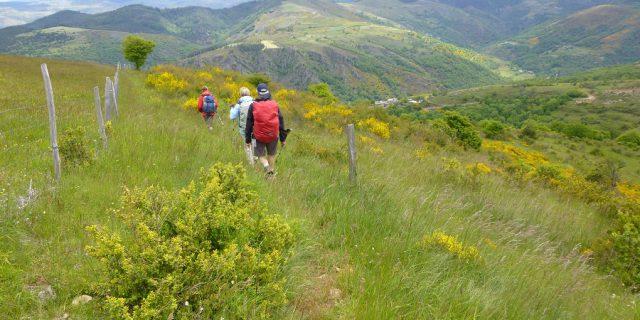 Soutenir un tourisme durable en Cévennes !